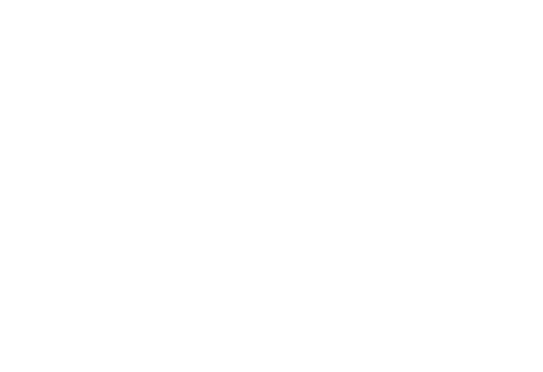 reform-mania